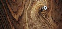 شناسایی چوب خوب از بد